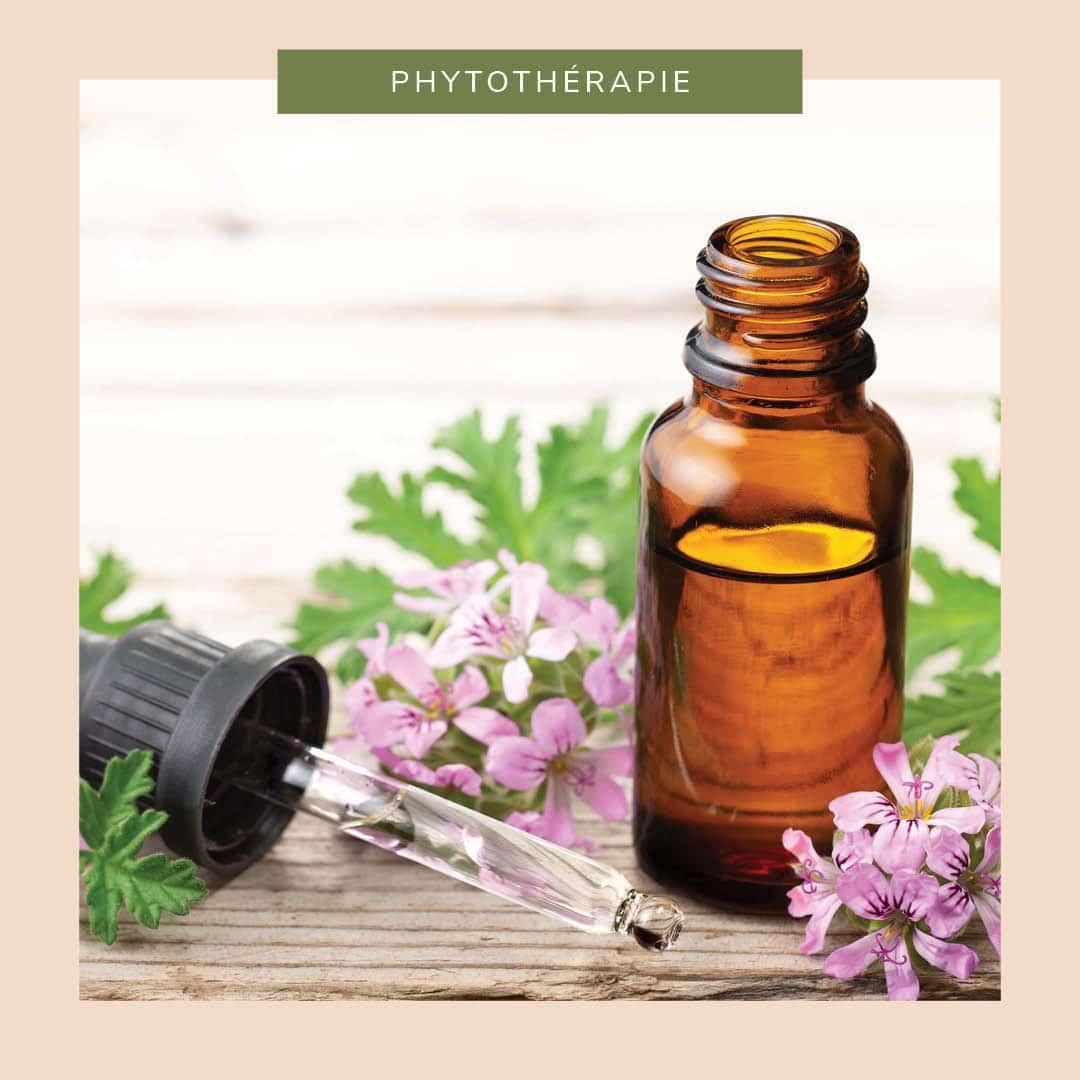 L'indispensable huile essentielle de géranium