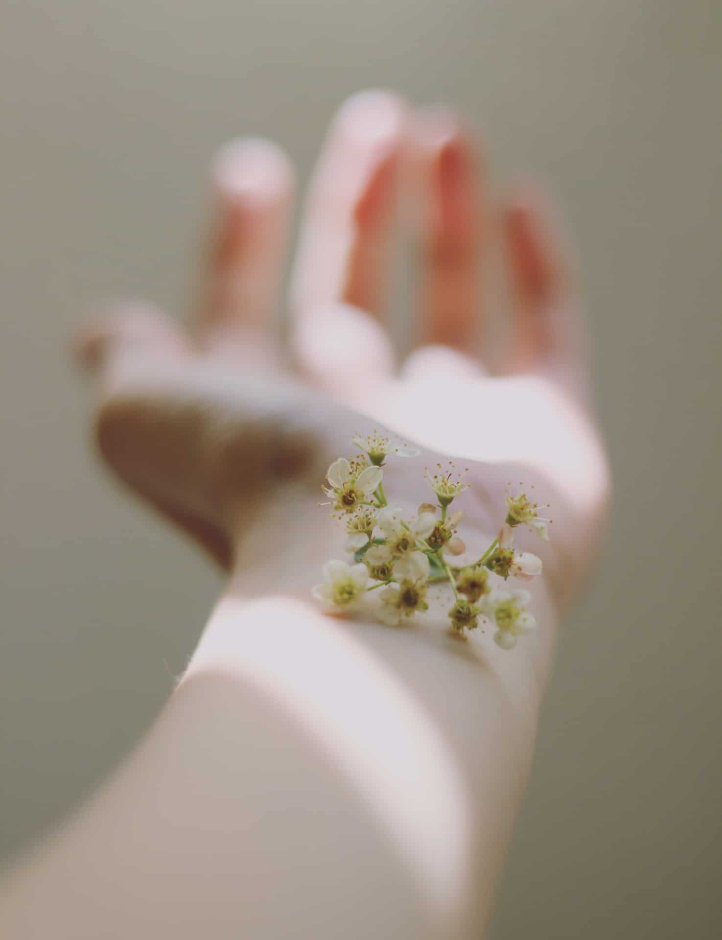 Main et fleurs